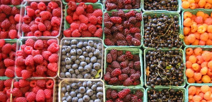 Pequenos frutos.jpg